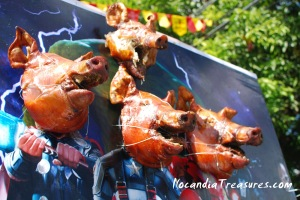 Roasted pigs being paraded in previous year's festival