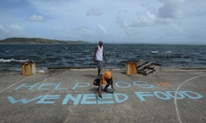 A man paints a message on a baskeball court that reads 'Help SOS We Need Food' at Anibong in Tacloban Photograph: NOEL CELIS/AFP/Getty Images