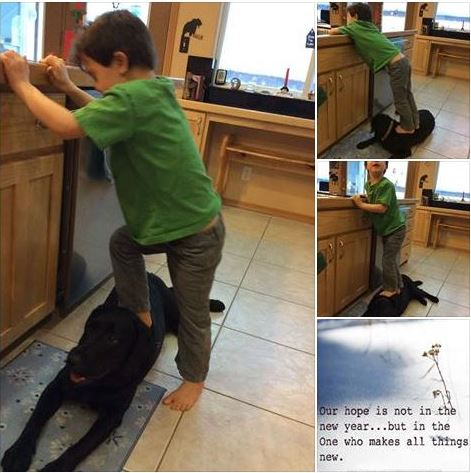 Sarah Palin's son Trig, uses family dog as a step stool (Screen capture from Sarah Palin's Facebook Page)