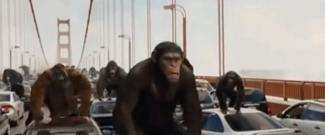 A scene from the Hollywood film, 'Rise of the Planet of the Apes'