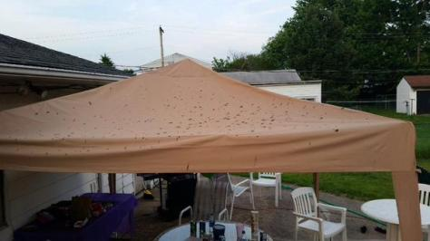 Human waste-covered canopy at a Pennsylvania birthday party